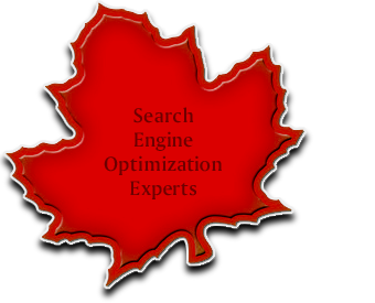 SEO Experts in Ottawa